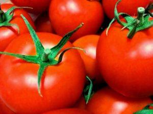 15.tomato