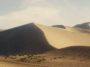 67.yellow-sand2