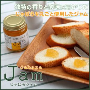 ja00160_s_01