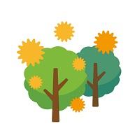 070.pollen