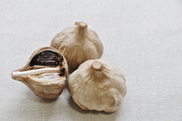56.garlic1