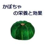 美容効果抜群かぼちゃの栄養と効能は?エアコン病にも最適!冷えを解消!!