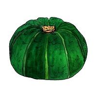 189.pumpkin