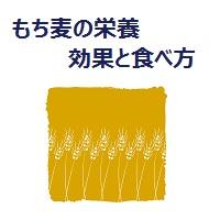 glutinous-wheat