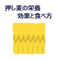 rolled-barley