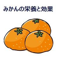 001.mandarin-orange-00
