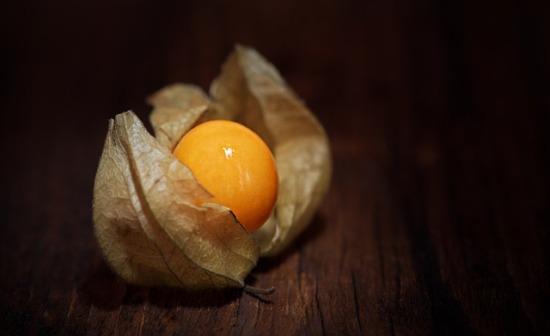 012.golden-berry-03