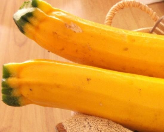 028.zucchini-02