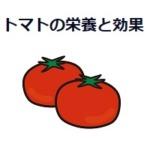 トマトの栄養と効果は?ミニトマトと違いはあるの?ダイエット補助や二日酔いにも!