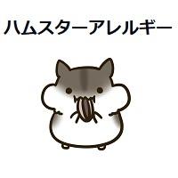 312.hamster-allergy-00