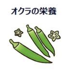 オクラの栄養はネバネバにあり!効能や効果的な食べ方、食べ過ぎについて!