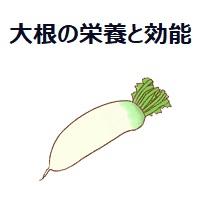 048.white-radish-00