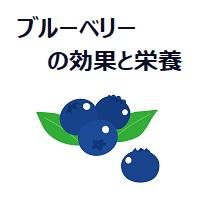049.blueberry-00