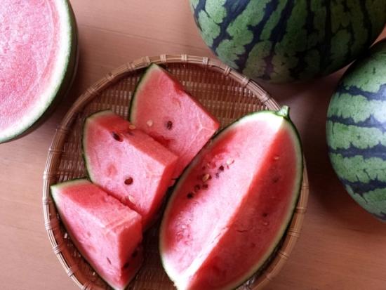 050.watermelon-02