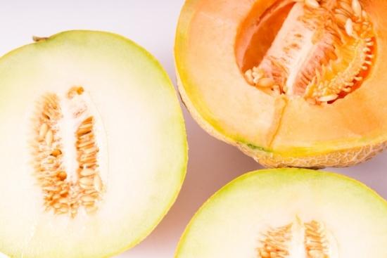 051.melon-03