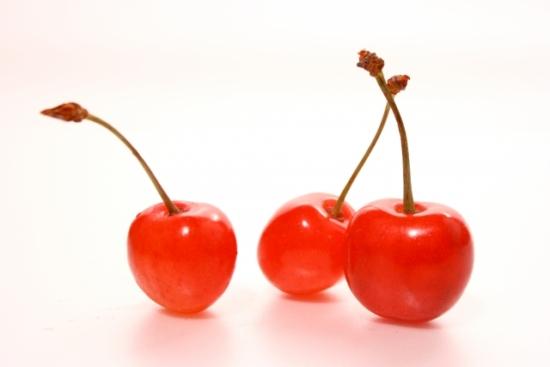 332.cherry-allergy-03