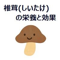 057.shiitake-00