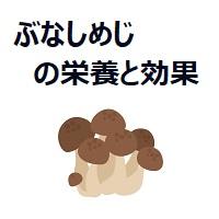 058.shimeji-00