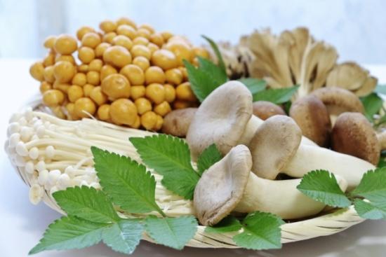 345.mushroom-allergy-01