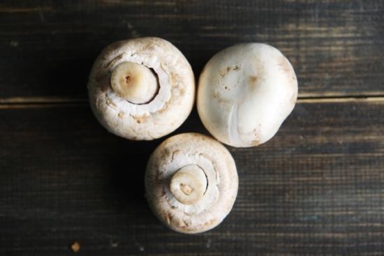 345.mushroom-allergy-06