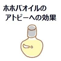 355.jojoba-oil-00